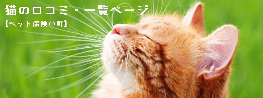 ペット保険・猫の口コミ