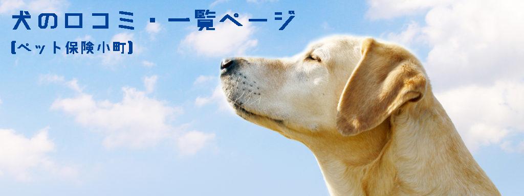 ペット保険・犬の口コミ一覧