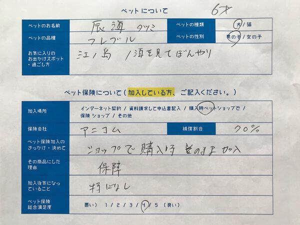 辰海ちゃん、口コミ回答用紙