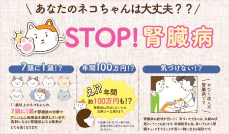 あなたのネコちゃんは大丈夫?? STOP!腎臓病