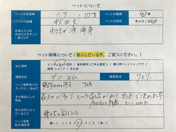 秋田犬、ぐりちゃんの口コミ回答用紙
