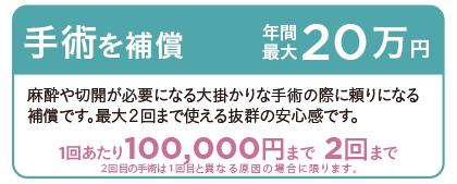 手術を補償 年間最大20万円