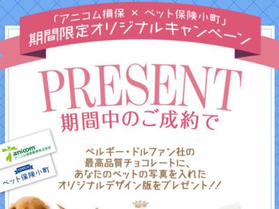 「アニコム損保×ペット保険小町」期間限定オリジナルキャンペーン開催中