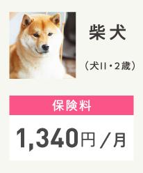 トイプードル (犬Ⅱ / 2歳)保険料1,340円/月