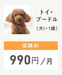 トイプードル (犬I / 1歳)保険料990円/月