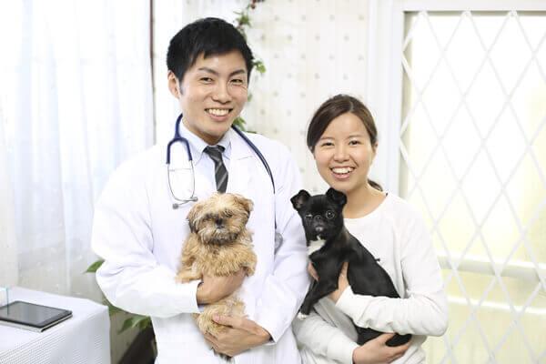 改正動物愛護法-写真3