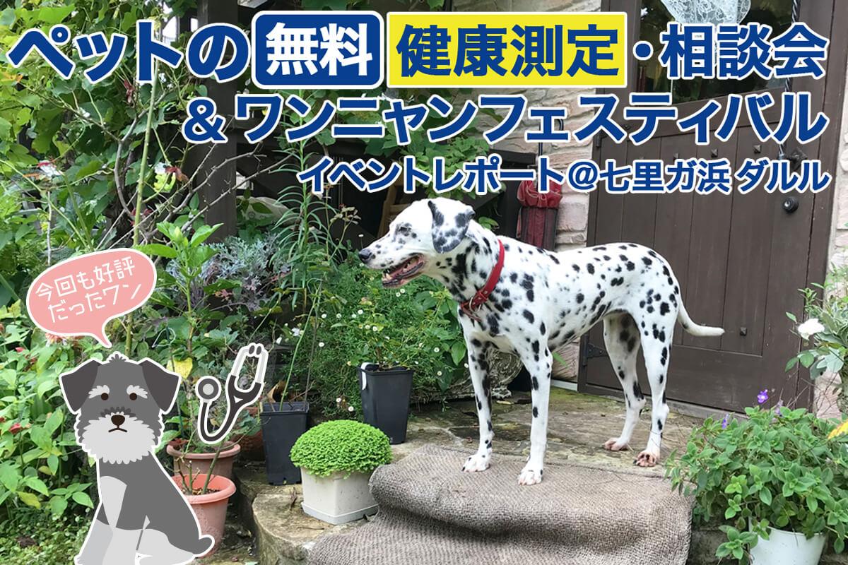 ペットの無料健康測定・相談会&ワンニャンフェスティバル イベントレポート @七里ガ浜ダルル